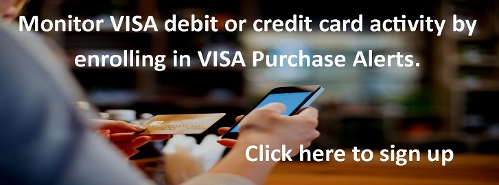 VISA Purchase alert banner
