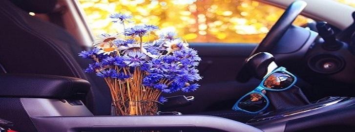 Purple Flowers in the inside of a car