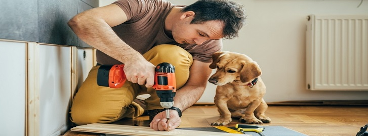 Dog watching man drill into wood